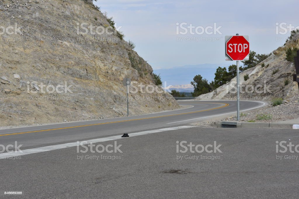 Country road at Mount Charleston in Nevada. stock photo