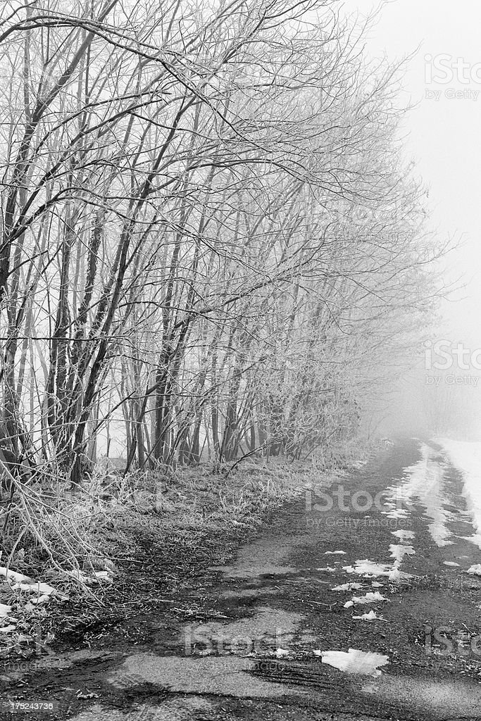 Country Road. Black and White royalty-free stock photo
