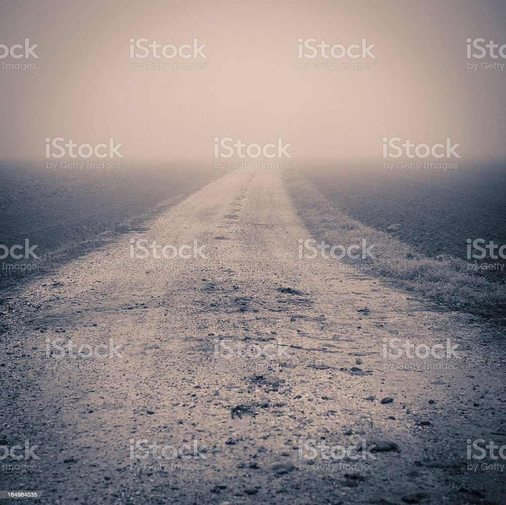 Country Road in a Foggy Morning stock photo