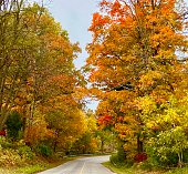 Beautiful vibrant fall colours on country road in Ontario Canada