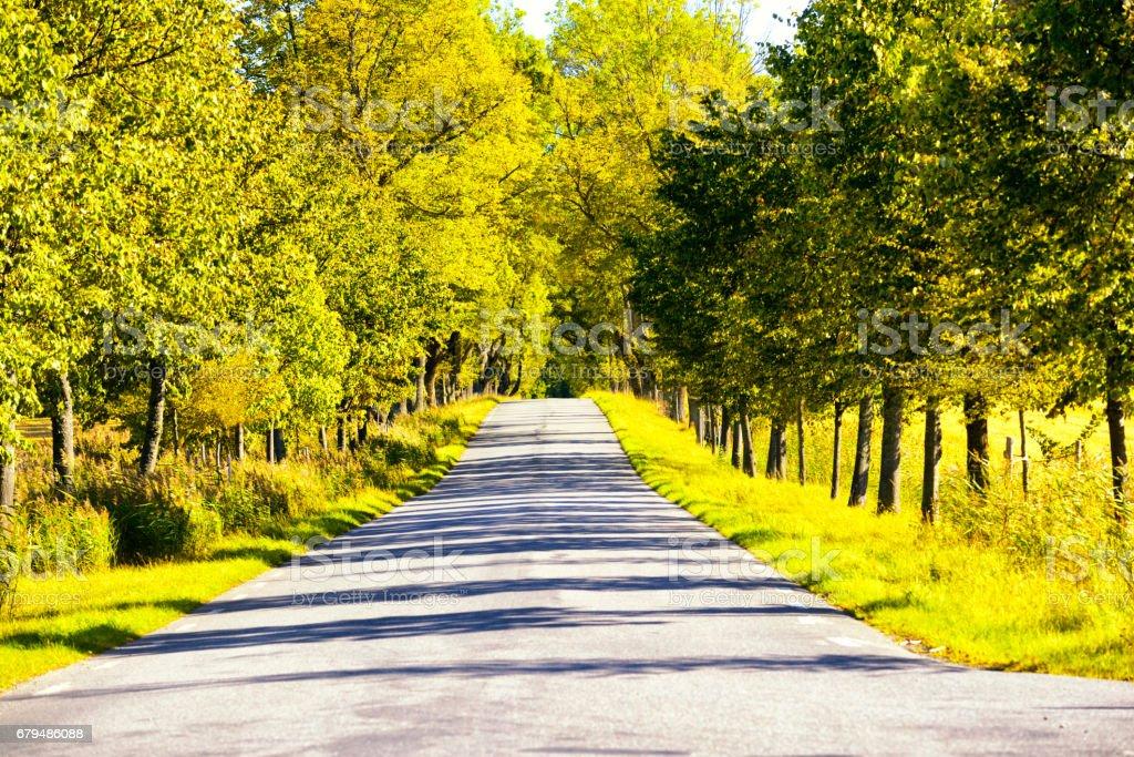 Country road in Chianti region, Tuscany, Italy royalty-free stock photo