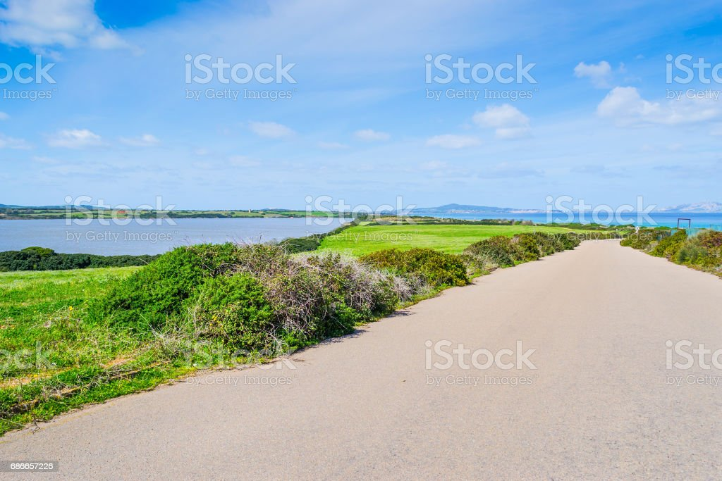 Country road in Fiume Santo shore royalty-free stock photo