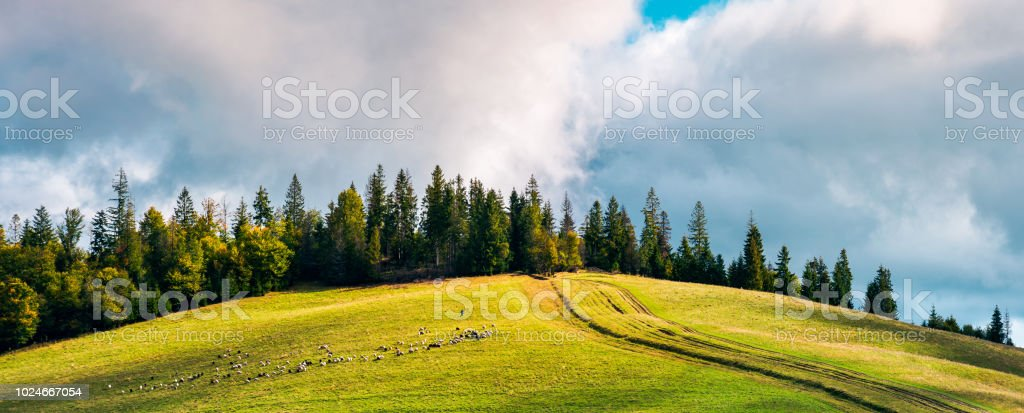 country road in mountains stock photo