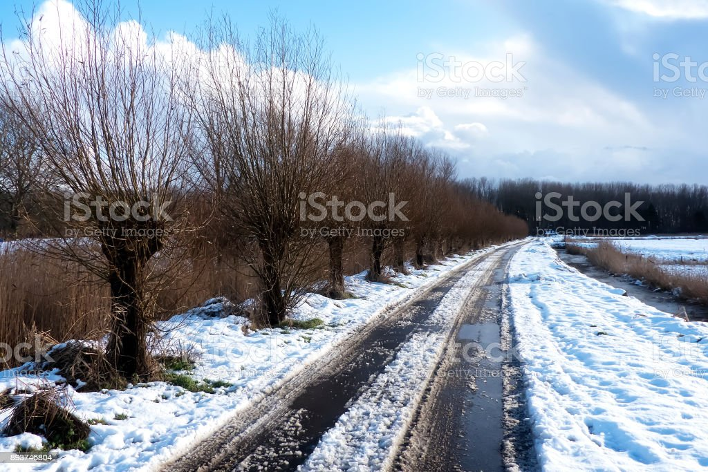 Landstraße im Schnee neben Bäumen. – Foto