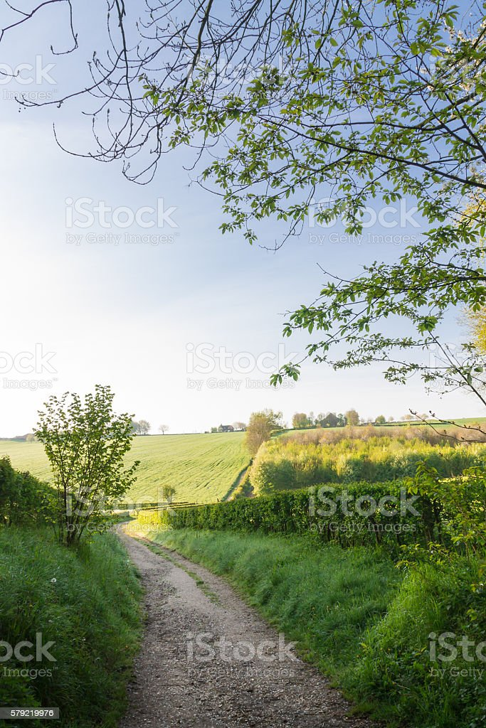 Country road in the countryside on a beautiful spring day. – Foto