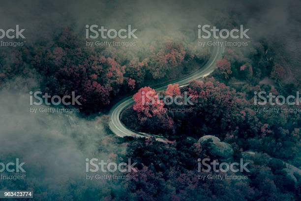 Photo of Country Road in the Night Mysterious view of Landscape with asphalt Road