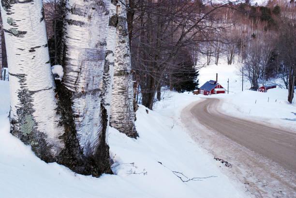 Eine Landstraße im Winter – Foto