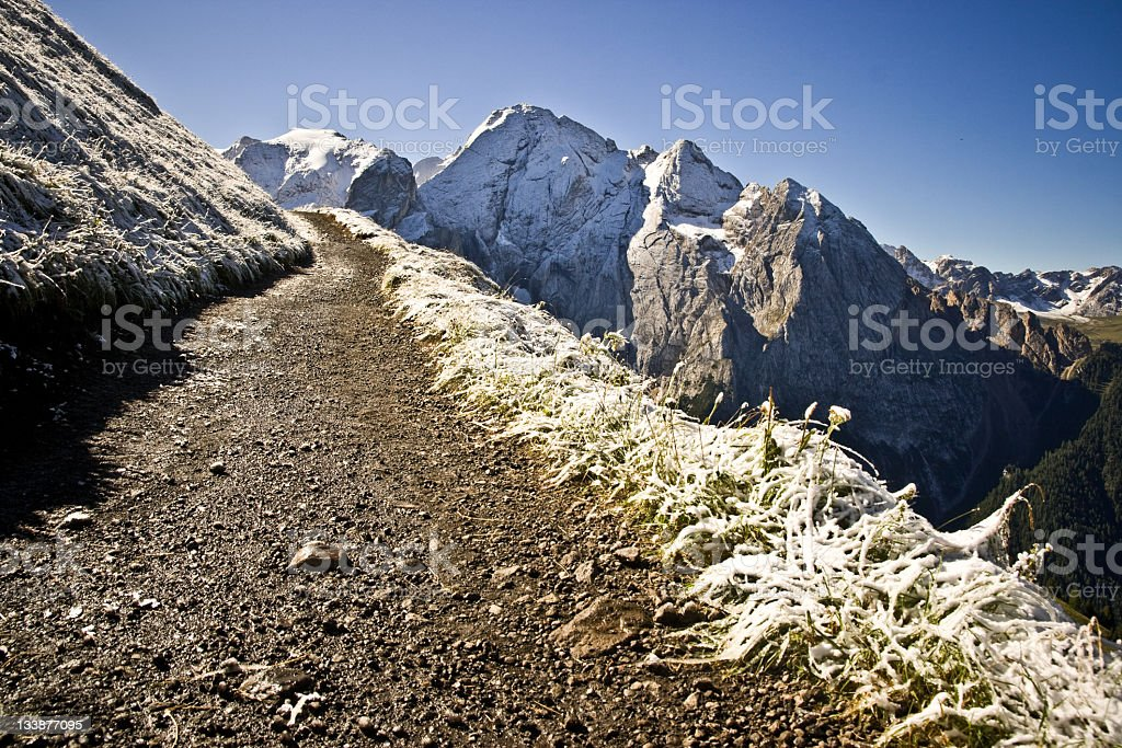 Country road in winter royalty-free stock photo