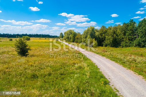 1155573645istockphoto Country road on a summer sunny day. Nature landscape 1185370549