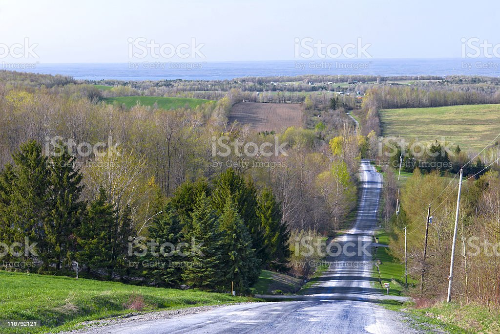 Country Road on an Afternoon in Spring royalty-free stock photo