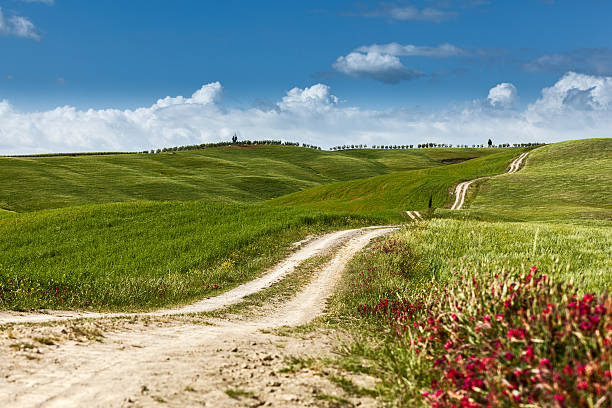 Country road on rolling hill in a rural landscape stock photo