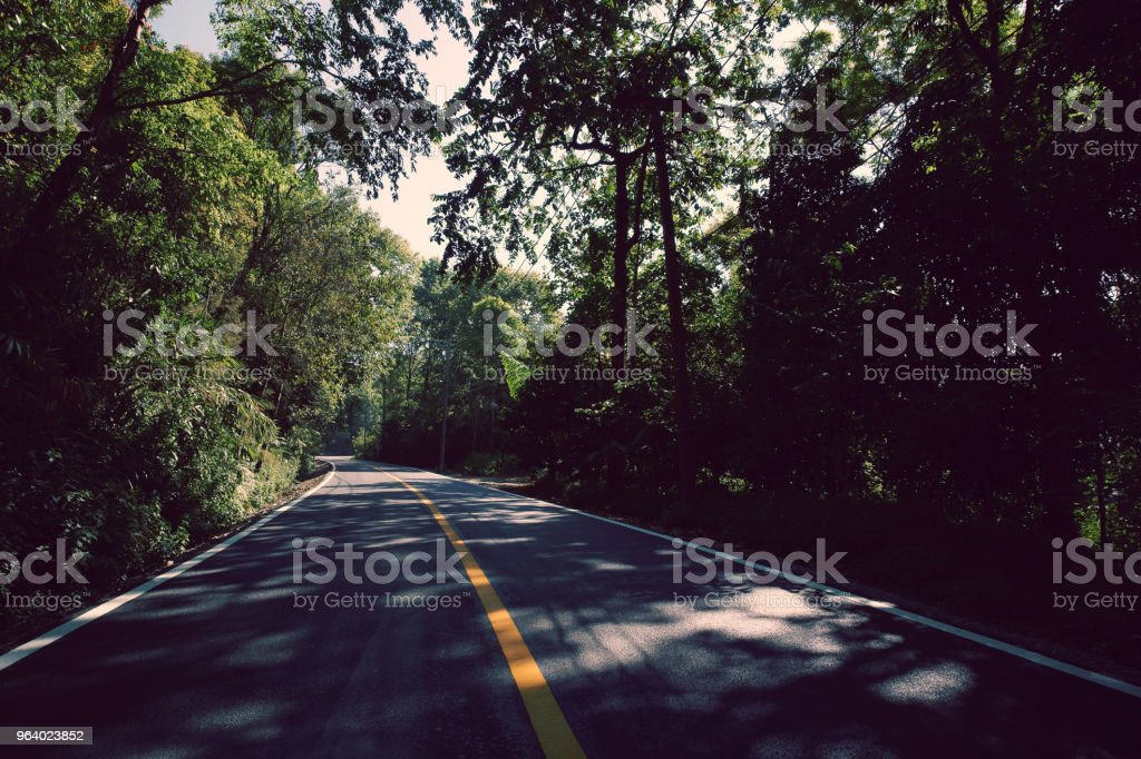 Country Road on the Mountain - Royalty-free Agricultural Field Stock Photo