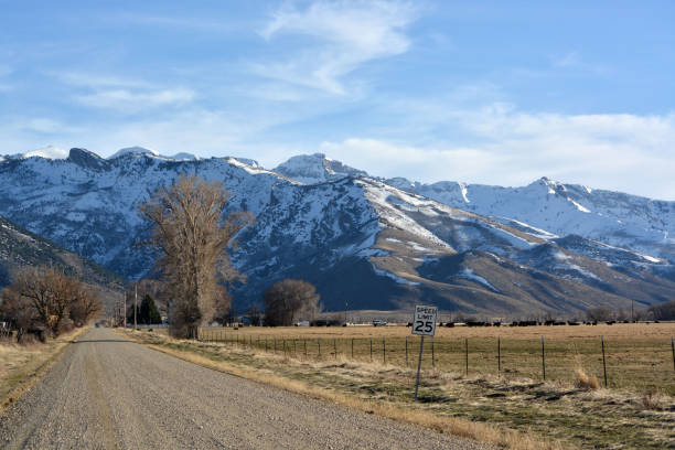 Country road A long dirt road in Lamoille Nevada, leading into the Ruby Mountains. nevada stock pictures, royalty-free photos & images