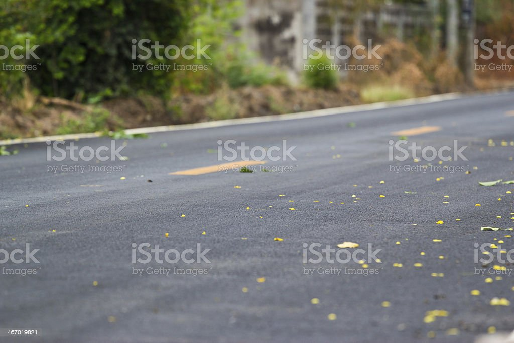 country road. royalty-free stock photo
