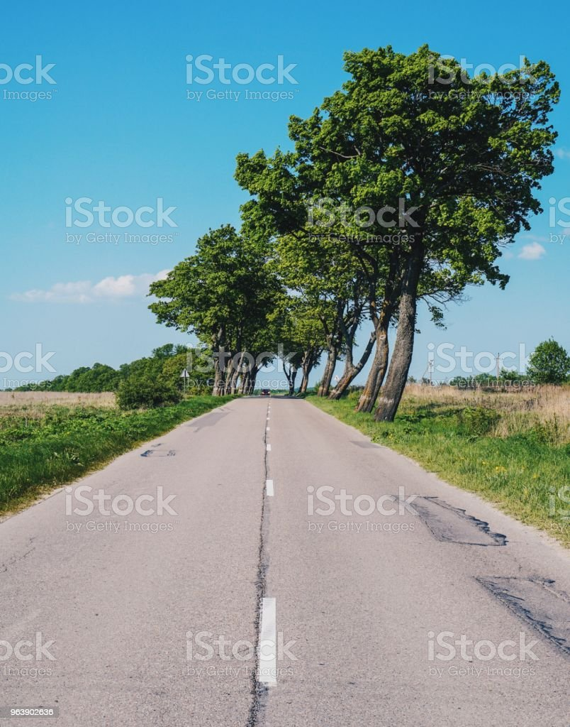 Country Road - Royalty-free Agricultural Field Stock Photo