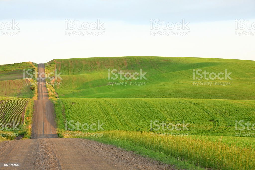 country road rambling over green hills stock photo
