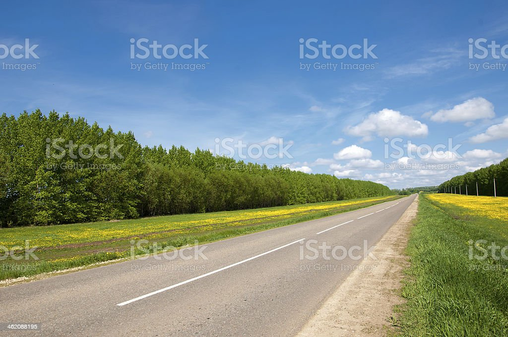 Country road. road in Autumn stock photo