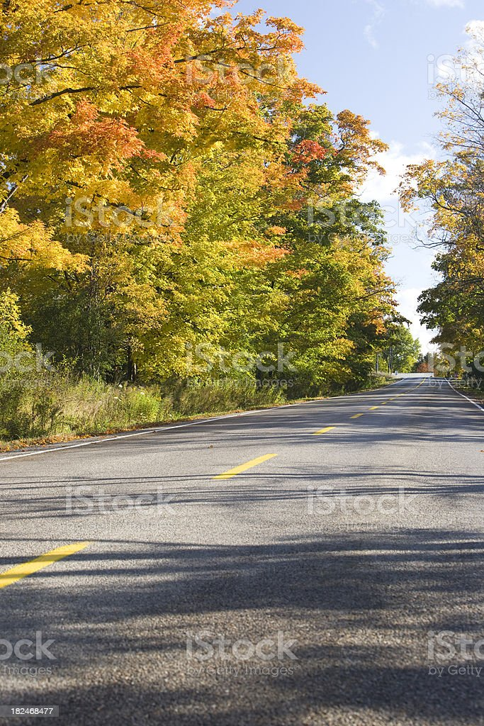 Country Road through Autumn Colours stock photo