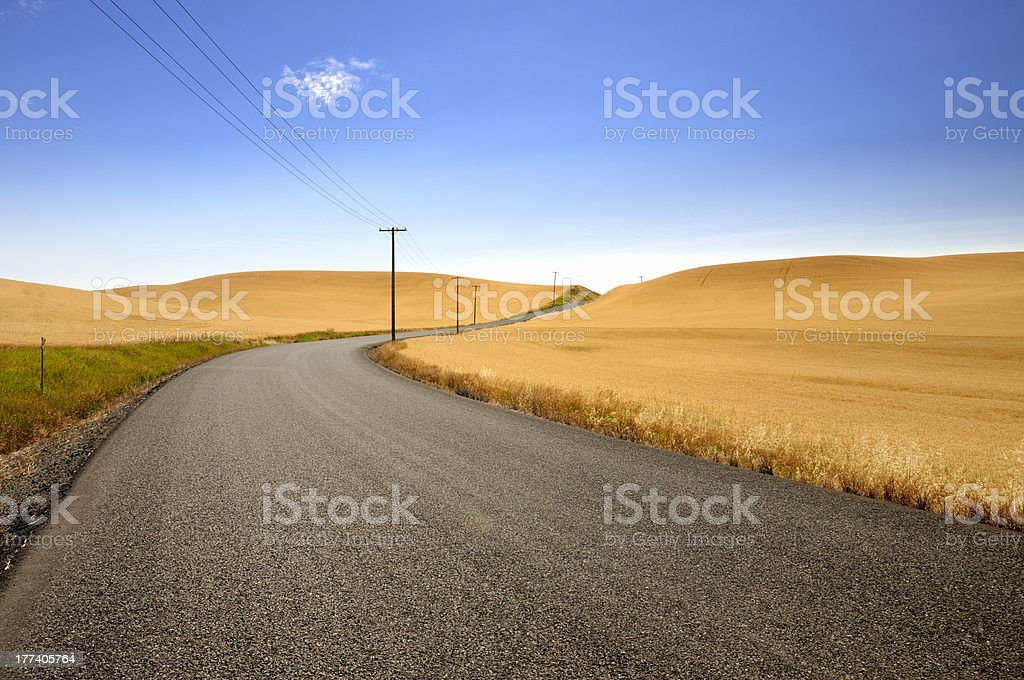 Country Road Through Farmland royalty-free stock photo