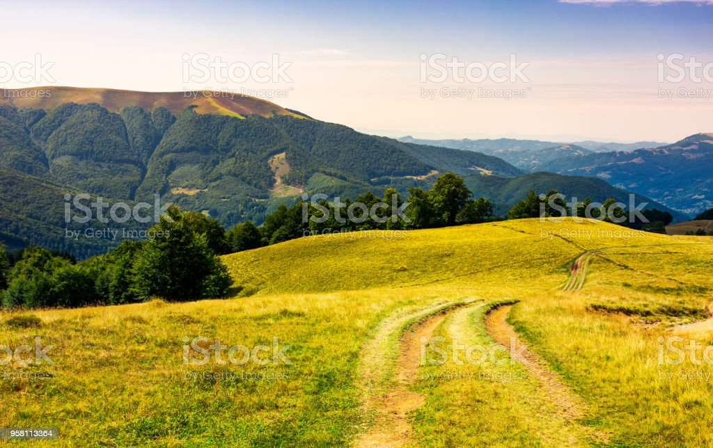 country road through grassy hillside stock photo