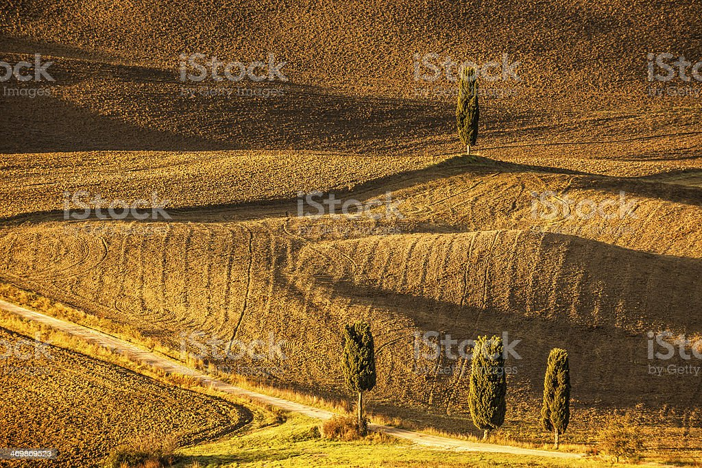 Country Road Through Rolling Landscape With Cypress Trees, Tuscany, Italy royalty-free stock photo