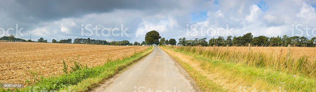 Country road to the horizon royalty-free stock photo