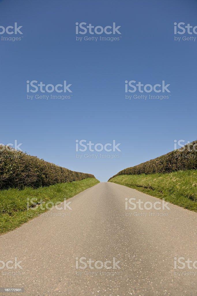 Country road vanishing over horizon vertical stock photo