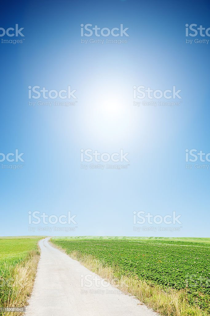 country road with cloudless sunny sky royalty-free stock photo
