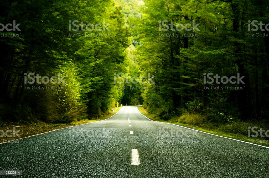 Country road with forest around royalty-free stock photo