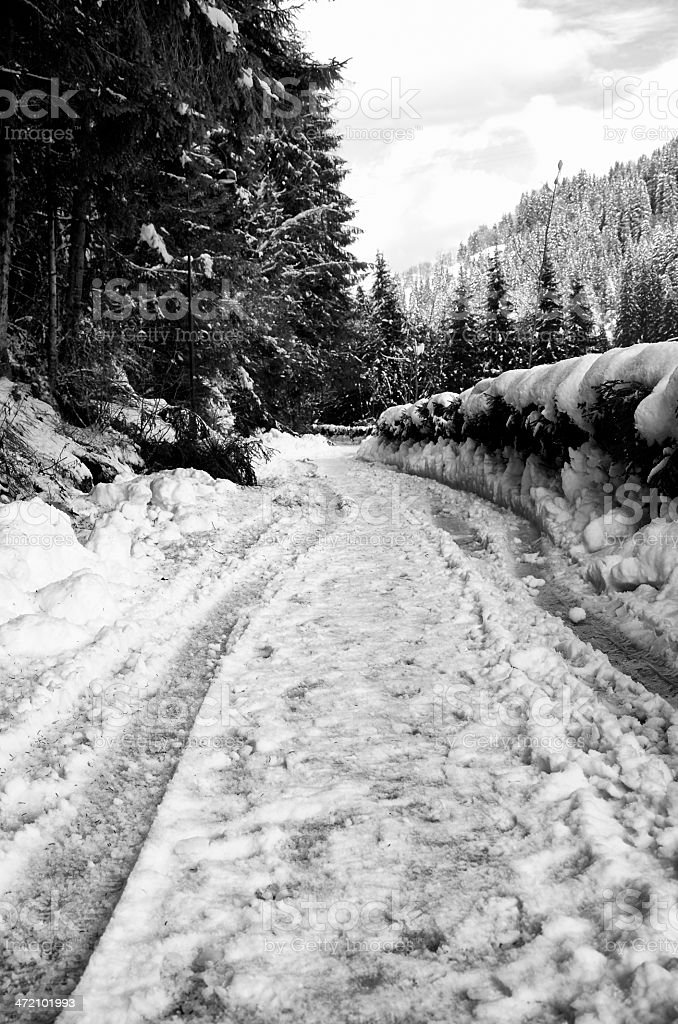 Country Road with Snow. Black and White royalty-free stock photo