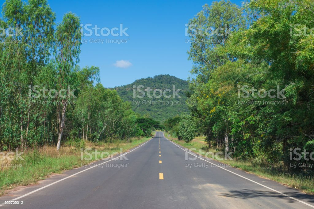Country Road With Trees Beside in rural area. Nature and green.'n stock photo