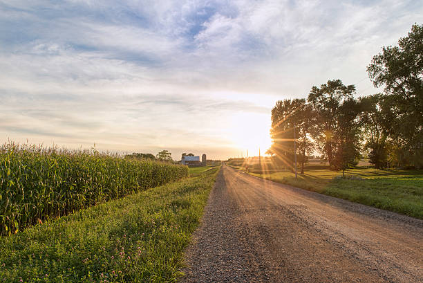 Country scene during late summer autumn sunset. - foto de stock