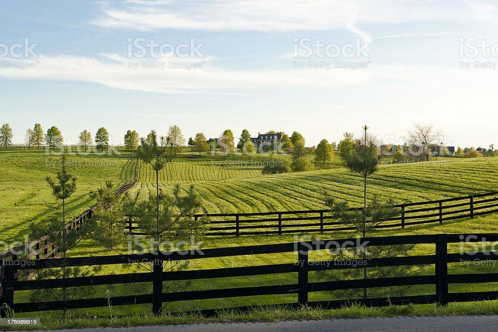 Land Landschaft – Foto
