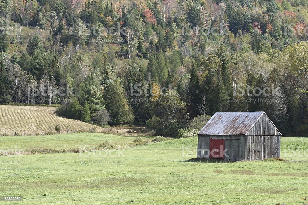 Country Scenic royalty-free stock photo