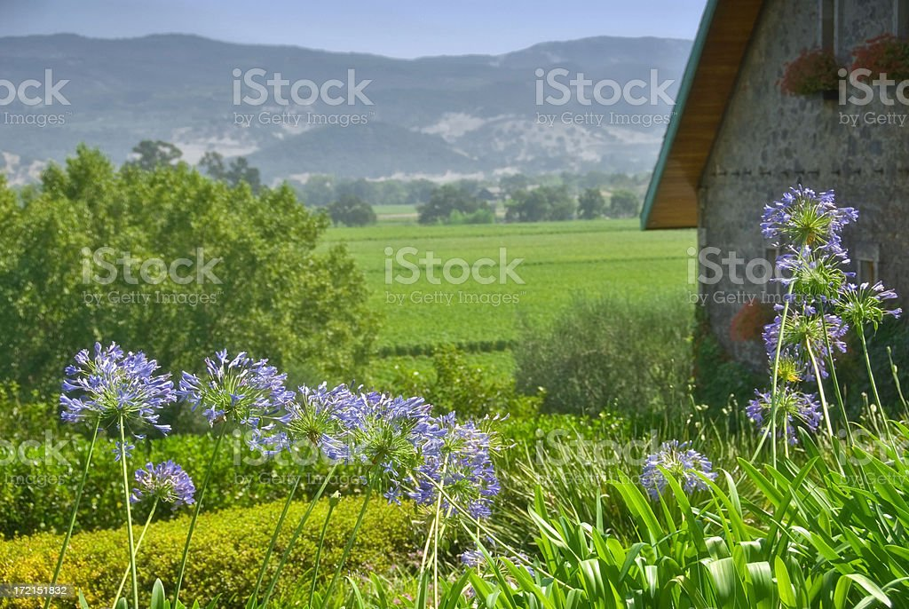 Country Setting royalty-free stock photo