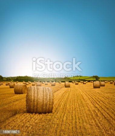 istock Country Side Hay Bale Scenery 155615621