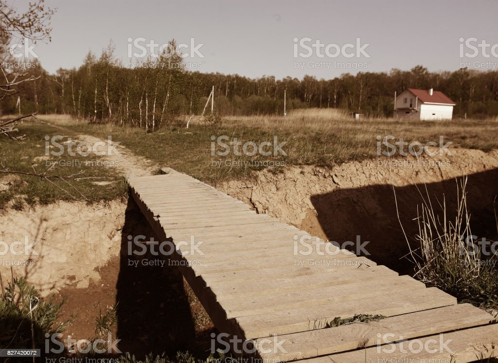 country summer landscape with wooden breach stock photo