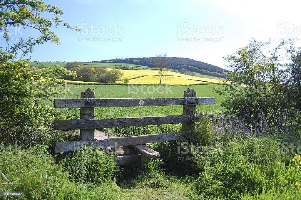 country walk stock photo