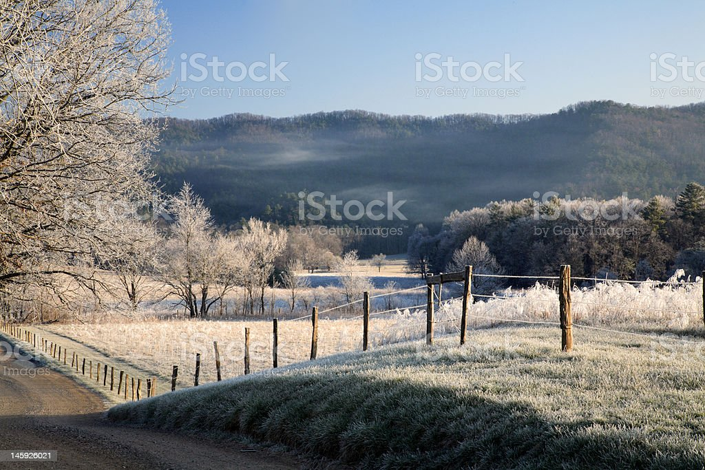 Country Winter Morning royalty-free stock photo