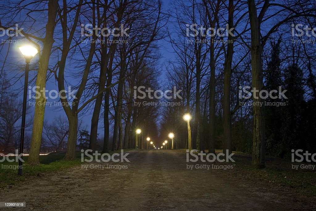 Countryroad by night royalty-free stock photo