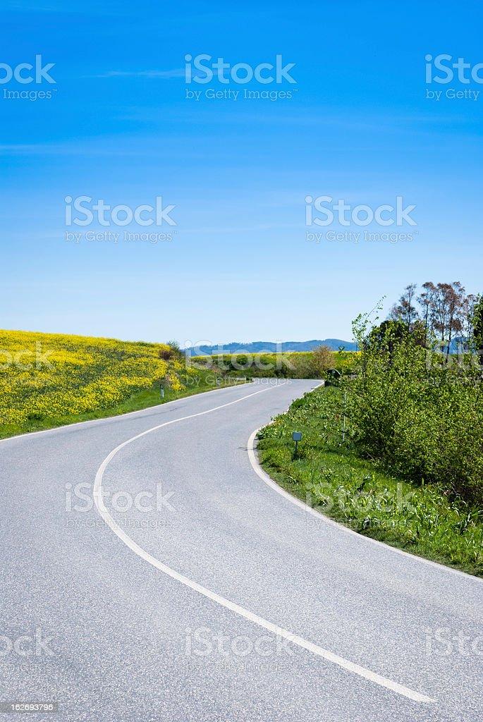 Countryroad in Tuscany, Italy royalty-free stock photo