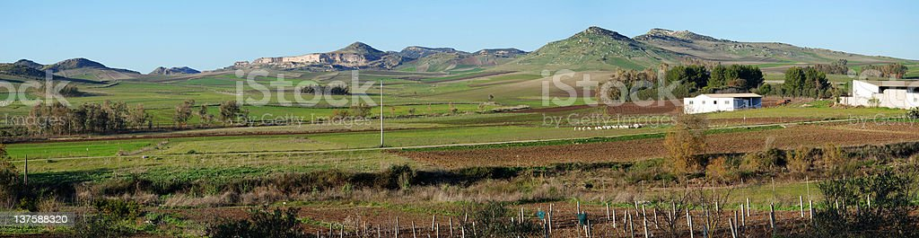 countryside and agriculture in sardinia royalty-free stock photo