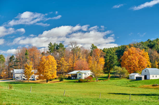 Countryside at sunny autumn day Countryside at sunny autumn day in New Hampshire, USA rural scene stock pictures, royalty-free photos & images