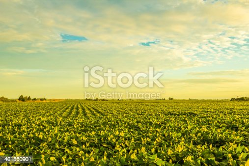 istock Countryside at sunset 461850901