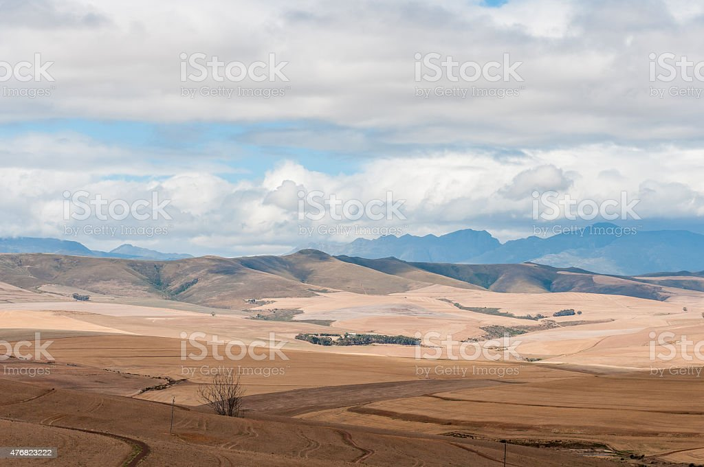 Countryside between Bot River and Caledon stock photo