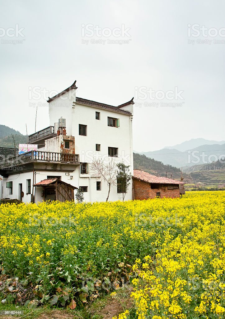 countryside in China royalty-free stock photo