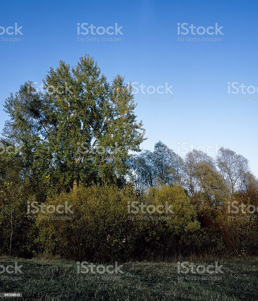 countryside in fall season royalty-free stock photo