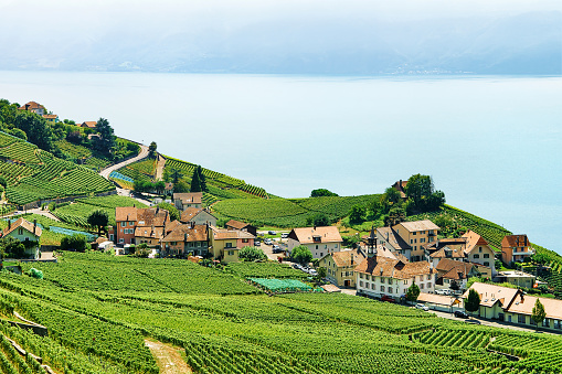 Countryside in Vineyard Terraces Lavaux hiking trail Switzerland