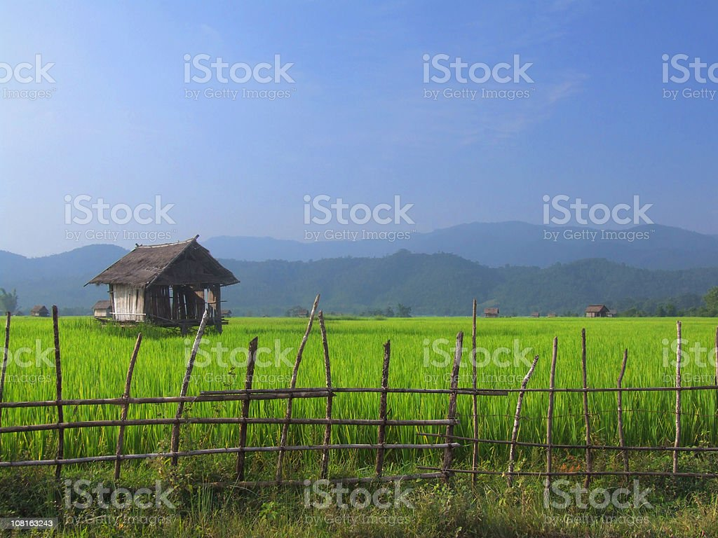 Countryside – Landscape – Old Barn in a Green Field royalty-free stock photo