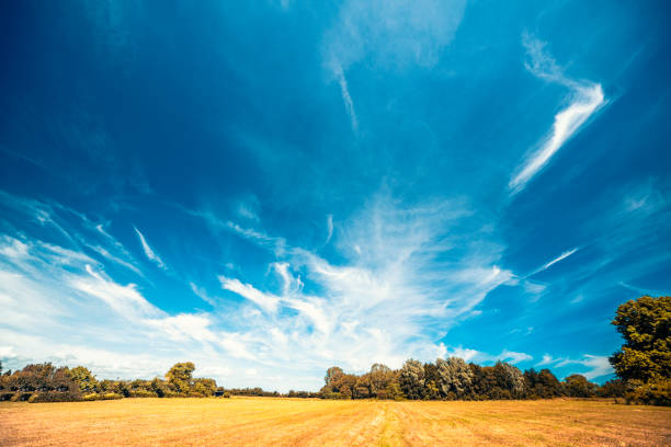 Countryside landscape with a dramatic blue sky stock photo